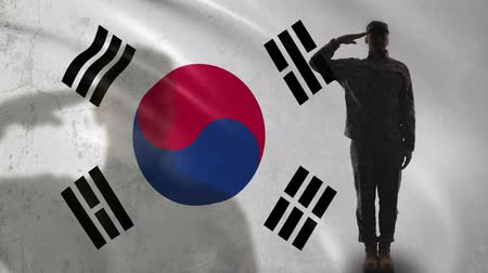 peacekeeping : Korean soldier silhouette saluting against national flag, military operation Stock Footage