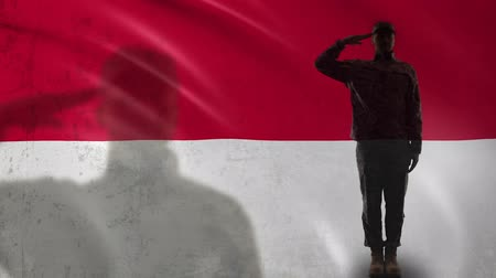 peacekeeping : Indonesian soldier silhouette saluting against national flag, military volunteer Stock Footage