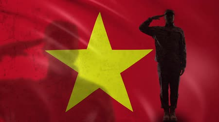 peacekeeping : Vietnamese soldier silhouette saluting against national flag, responsibility