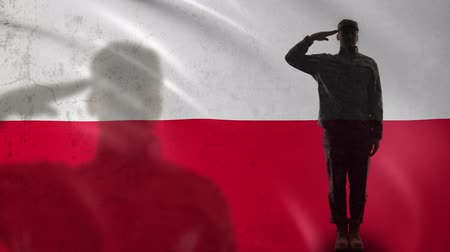 peacekeeping : Polish soldier silhouette saluting against national flag, air defense forces Stock Footage