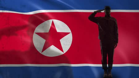 peacekeeping : North Korean soldier silhouette saluting against national flag special operation
