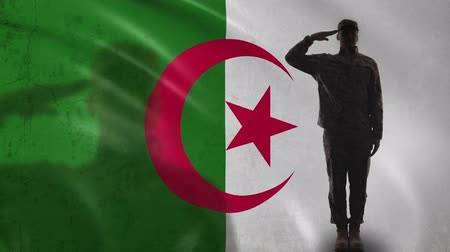 peacekeeping : Algerian soldier silhouette saluting against national flag, military forces Stock Footage