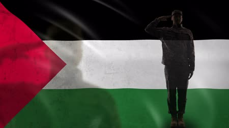 heroes : Palestinian soldier silhouette saluting against national flag, violent conflict