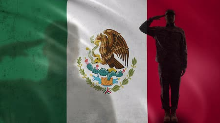 peacekeeping : Mexican soldier silhouette saluting against national flag, protection territory