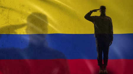 peacekeeping : Colombian soldier silhouette saluting against national flag, defense agency