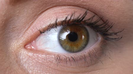 bulva oční : Womans eye closeup, vision examination, anti-allergic cosmetics, ophthalmology