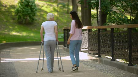pacjent : Volunteer walking with elderly woman using walker in hospital park, disability