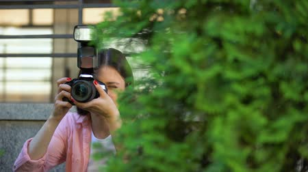spying : Female paparazzi hiding behind trees taking photos, searching for sensation Stock Footage