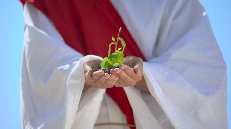salva vidas : Male hands in robe holding sprout, ecological problems, save planet concept Vídeos