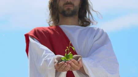 生態系 : Man like Jesus holding plant in palms, care and preservation of nature, ecology