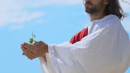 jézus : God Jesus raising sprout on sky background, 3 day of world creation, genesis Stock mozgókép