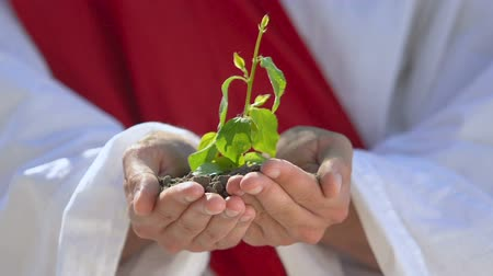 ekosistem : Hands in white robe holding plant, world creation, conservation of resources