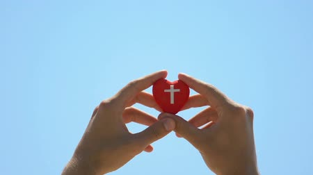vychovávat : Hands hold heart symbol with cross, religious charity, help to cardiac patients