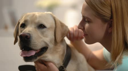 trusting : Young woman hugging dog, emotional pet connection, happy labrador owner, love