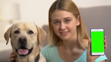 bontkraag : Smiling female holding green screen smartphone, hugging dog, online application