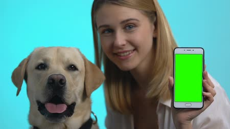 canino : Happy dog owner showing smartphone green screen, cute pet looking at camera, app