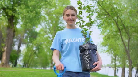 restaurar : Attractive female volunteer holding tree seedling, environmental protection