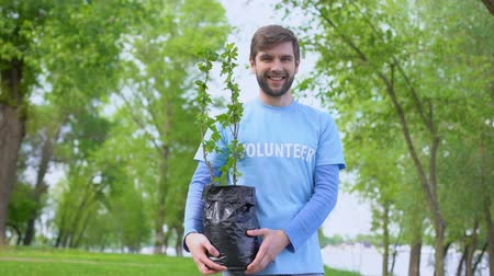 preservation : Smiling male volunteer holding green tree seedling standing in forest, eco event Stock Footage