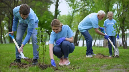 ekosistem : Volunteers planting tree saplings in park, natural resources conservation, care