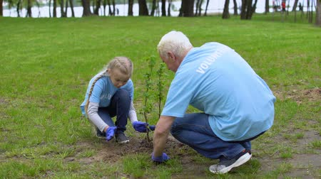 ekosistem : Happy senior volunteer and smiling female kid planting tree together, ecology