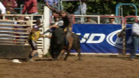 koń : Rodeo Cowboys - Bull Riding in Slow Motion