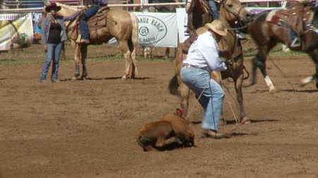 koń : Rodeo Cowboys - Calf Roping in Slow Motion