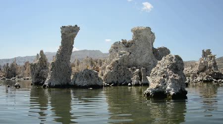 brine shrimp : Scenic Mono Lake California