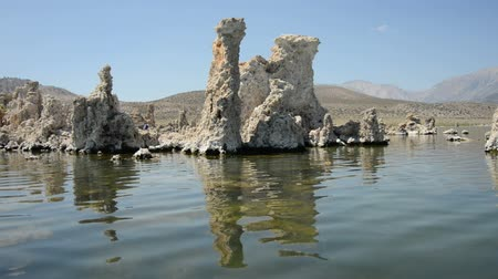 sea monkeys : Scenic Mono Lake California