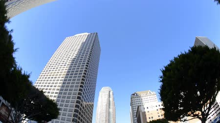 в центре города : Driving Downtown Los Angeles