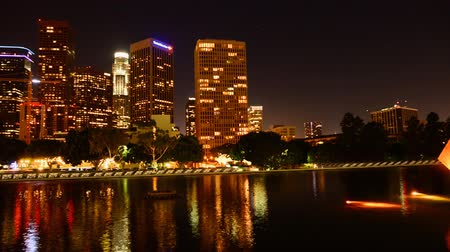 raster : Downtown Los Angeles at Night