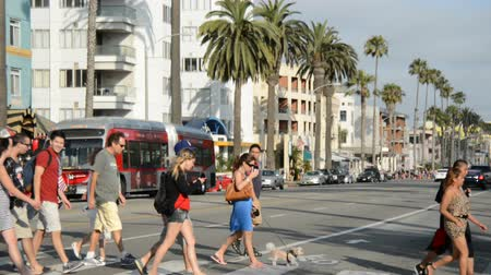 crosswalk : Tourists in Santa Monica California