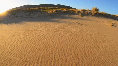 дюна : Sand dunes in Mojave National Park Стоковые видеозаписи