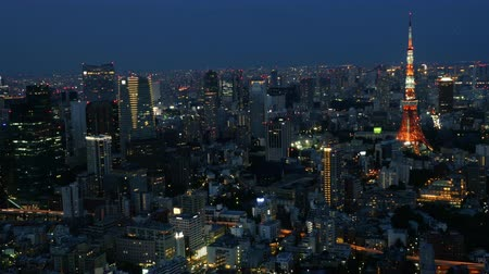 japonya : Time Lapse of Skyline with Tokyo Tower at Night - Tokyo Japan Stok Video