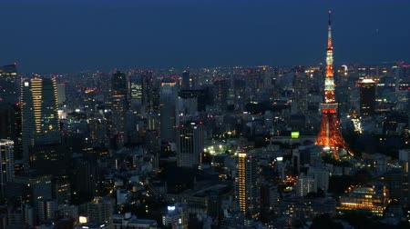 tokio : Time Lapse of Skyline with Tokyo Tower at Night - Tokyo Japan Wideo