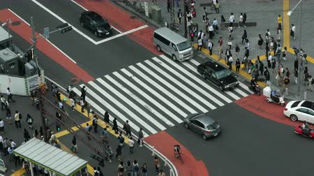 japonya : Time Lapse of Busy Pedestrian Street Crossing From Above  - Shibuya, Tokyo Japan Stok Video