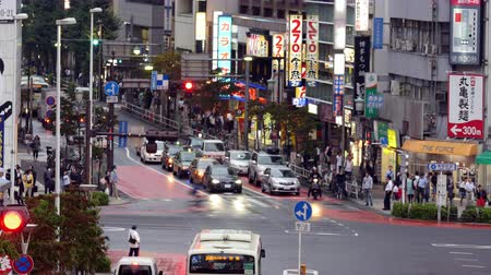 verkeersbord : Time-lapse van Verkeer en Voetgangers in de drukke Ginza Shopping District - Tokyo Japan Stockvideo
