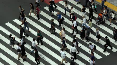 japonya : Busy Pedestrian Crossing From Above  - Shibuya, Tokyo Japan