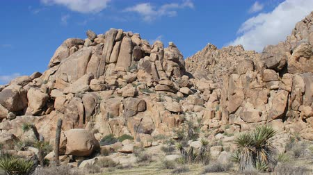 luz do dia : Time Lapse of Desert Terrain - Joshua Tree National Park