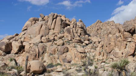 luz do dia : Zoom Out - Time Lapse of Desert Terrain - Joshua Tree National Park Vídeos