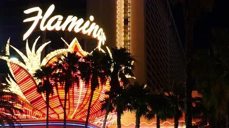 flaming : Flamingo Casino at Night - Las Vegas Strip