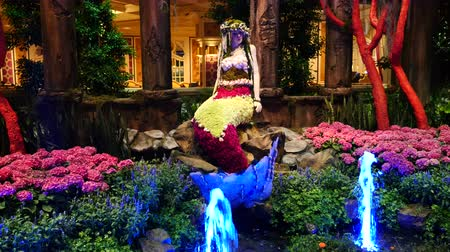 sereia : Mermaid on Display with Fountains