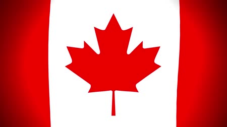 Animation of national flag canada flag slow waving on black background, flat style Stok Video