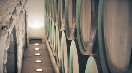 Barrels for wine in the cellar