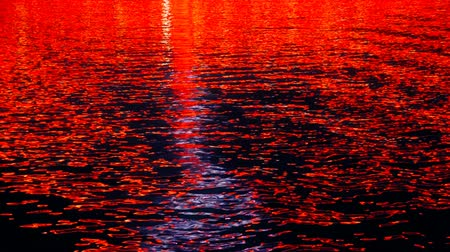 Colored city lights reflect on water surface Wideo