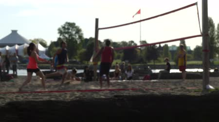 volleyball : Young people playing volleyball on beach Stock Footage