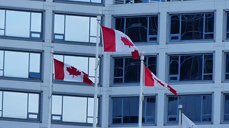 symbolisme : construction d'affaires de drapeaux canadiens National