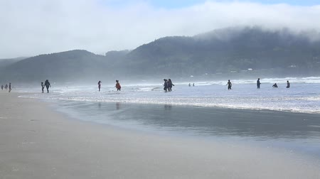 mais : Families playing ocean waves USA Cannon Beach May 2016