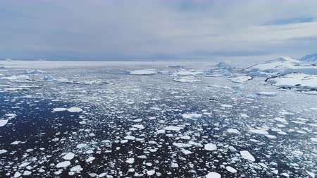 eye piece : Climate Change: Melting Ice. Aerial Flight Over Antarctica Ice Frozen Ocean Water. Drone Overview Shot Of Polar Ocean. Pieces Of Ice, Snow Floating In Cold Water. Wild Untouched Environment. Permafrost. 4k Footage. Stock Footage