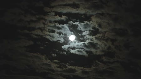 ürpertici : Full moon in the night sky, bright moon, night sky, the motion of clouds in the night sky against the background of a bright moon Stok Video