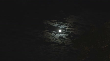 temor : Full moon in the night sky, bright moon, night sky, the motion of clouds in the night sky against the background of a bright moon Stock Footage